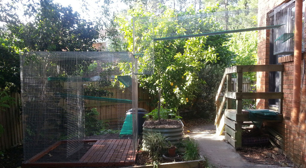 Cat Enclosures | Tunnels and Cat Proof Fencing Melbourne
